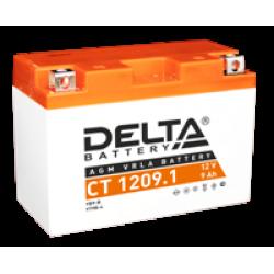 Аккумулятор DELTA CT1209.1, YT9B-BS(9B4), Д*Ш*В 151*71*107